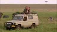 Wide shot couple on safari looking at animals through binoculars from sunroof of 4x4 / Masai Mara, Kenya