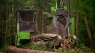 Wide shot crane loading log on to branch and bark stripping machinery in forest / Olympic Peninsula, Washington