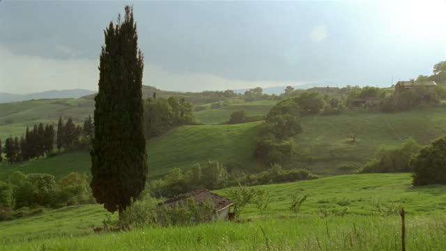 Wide shot cypress tree with rolling landscape in background / San Casciano dei Bagni, Tuscany, Italy