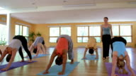Wide shot dolly shot students in yoga class performing downward dog pose with female instructor helping