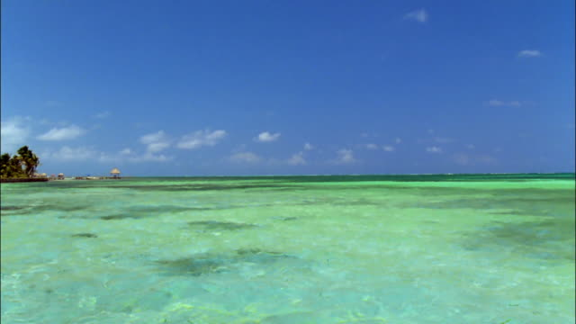 Wide shot horizon bisecting blue sky and clear green waters of Caribbean / Ambergris Caye, Belize