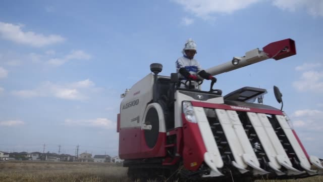 Wide shot low angle a farmer harvests wheat with a Yanmar Co combine harvester in Chiyoda Town Gunma Prefecture Japan Medium to close shot a farmer...