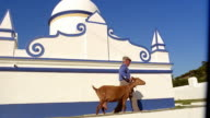 Wide shot low angle tracking shot man walking with goat next to blue and white building / Monsaraz, Portugal