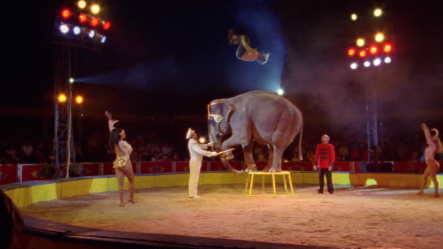 Wide shot man performing back flip on elephant balancing on stand at Circo Atayde Hermanos / Mexico