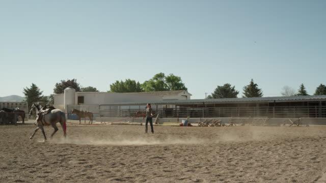 Wide shot of girl running horse in circle / Lehi, Utah, United States