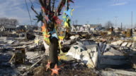 Wide shot of hope tree with multiple destoyed homes in background