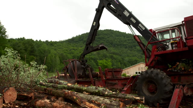 Wide shot of loader/slasher as saws a log, picks it up, and brings it to the foreground.