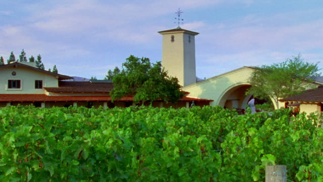 Wide shot pan building at Robert Mondavi Winery with vines in front/ Napa Valley, California