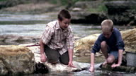 Wide shot pan two boys kneeling on rock in riverbed and fishing with net / Missouri