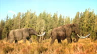 Wide Shot pan-right zoom-in zoom-out - Woolly mammoths march past a forest. /