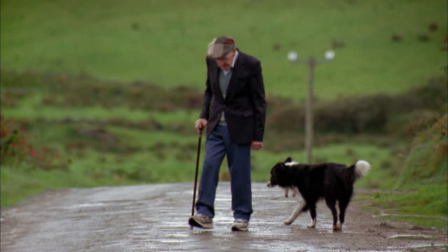 Wide shot senior man w/cane walking on rural road w/dog / Ireland