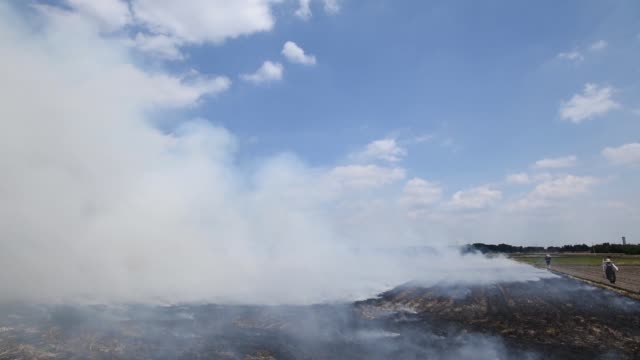 Wide shot smoke rises in the air from a wheat field burned after harvesting in Chiyoda Town Gunma Prefecture Japan Medium shot smoke rises from a...