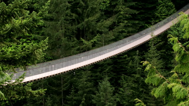 Wide shot Tourists crossing Capilano Suspension Bridge in forest/ Vancouver, British Columbia, Canada