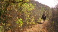 Wide shot woman riding on horseback on park trail