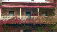 Wide shots of upstairs verandah balcony of old sandstone cottage covered in red and green ivy wrought iron railing and bull nose iron awning / tilt...