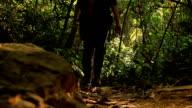 Wildtiere Fotograf Aufnahme Bild Vogel im Regenwald-Dschungel