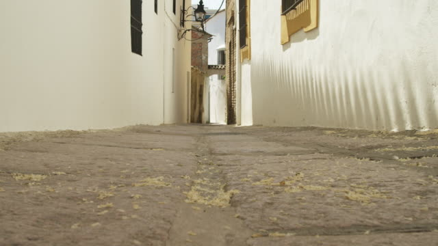 LA MS wind blowing flower petals down narrow alley in the former Jewish quarter in the historic center of Cordoba