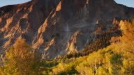 WS Wind blowing through cliff and aspen trees  / Marble City, Colorado, United States