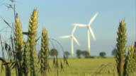 Wind Energy - Windfarm