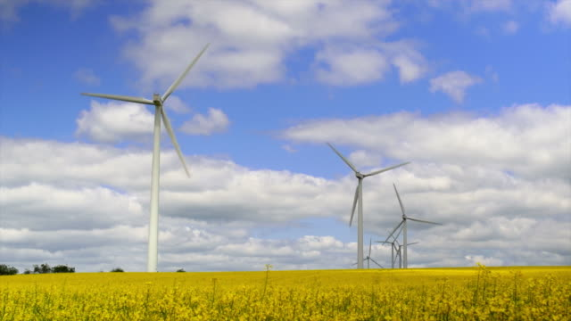 HD Wind Farm in Spring (Time Lapse)