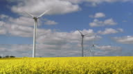 Wind Farm On Canola Field In Spring