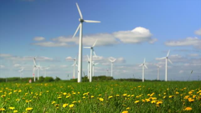 HD Wind Farm on Spring Field