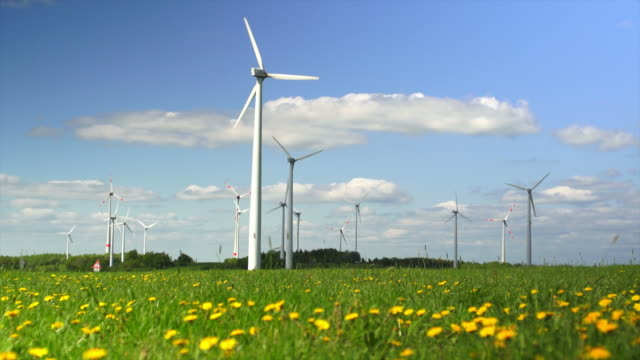 HD Wind Farm on Spring Field (Time Lapse)