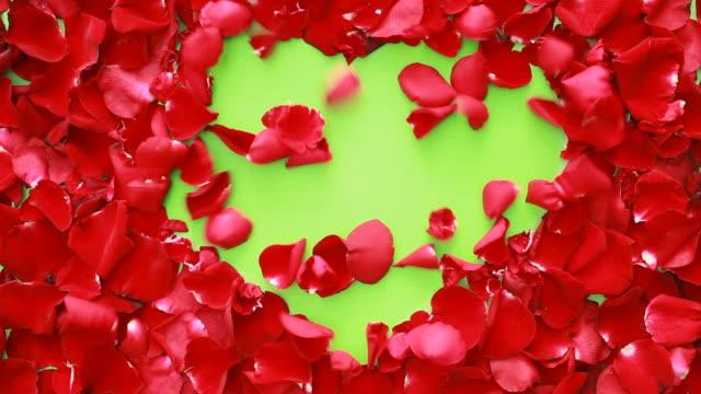 Wind der Liebe