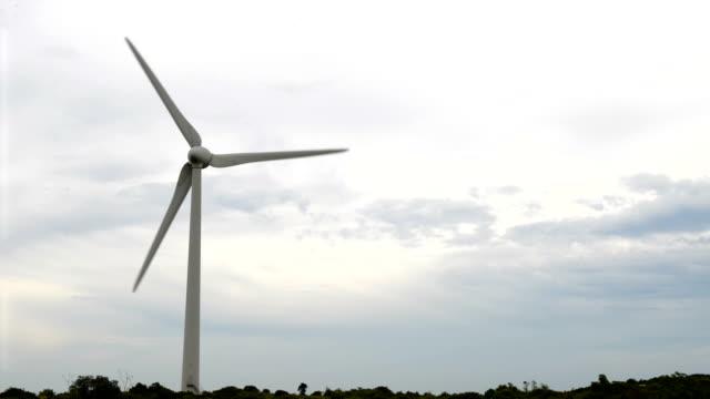 Turbina a vento e mulino a vento di generazione elettrica