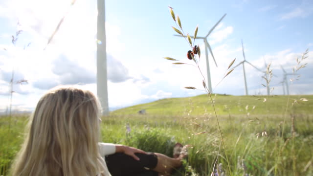 Wind turbines create electrical energy above woman, ladybirds