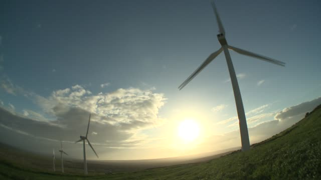 Wind turbines spin above a vast, grassy plain. Available in HD.