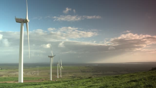 Wind turbines spin along a vast, grassy plain. Available in HD.