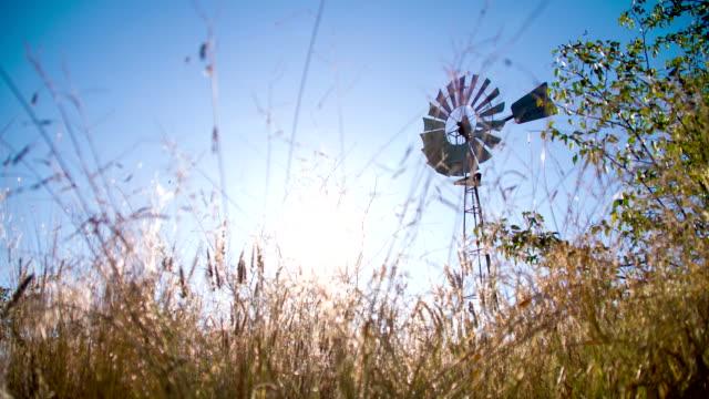 WS LA DS Windmill In Savannah