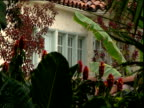 Windows of apartment through flowers Hotel Chateau Marmont Sunset Strip Los Angeles