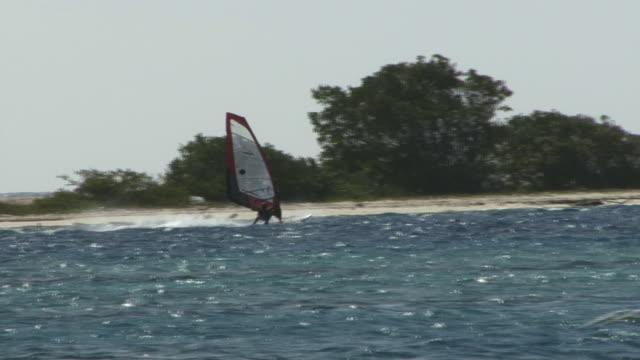 Windsurfer HD 1080