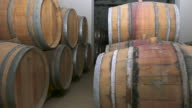 Wine barrels in french winery