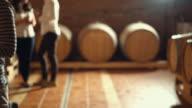 Wine tasting in a wine cellar, 4k.
