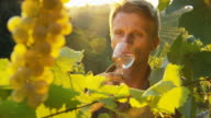 HD: Winemaker Tasting Fresh Wine