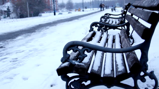 Winter at the park .