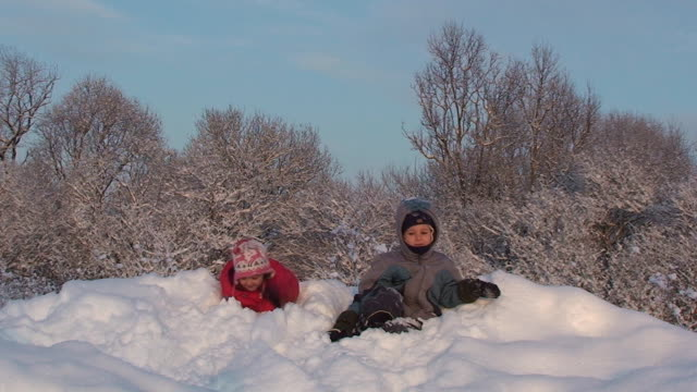 Winter. Children playing in the snow