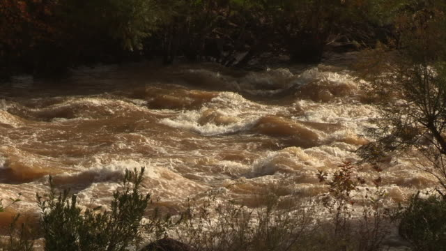 winter flood in the jordan river