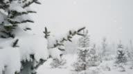 4K Winter Landscape | Loopable