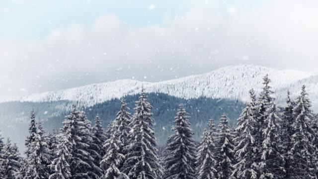 Winter mountain - copy space