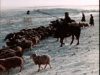 Winter on the Mongolian Steppe