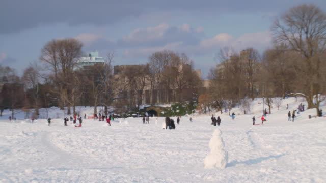 Winter scene in Prospect Park/Long Meadow with snowman