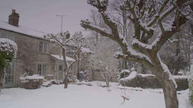 Winter snow falls onto cottage garden, Oxfordshire, England