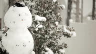 Winter Snow Storm and Snowman