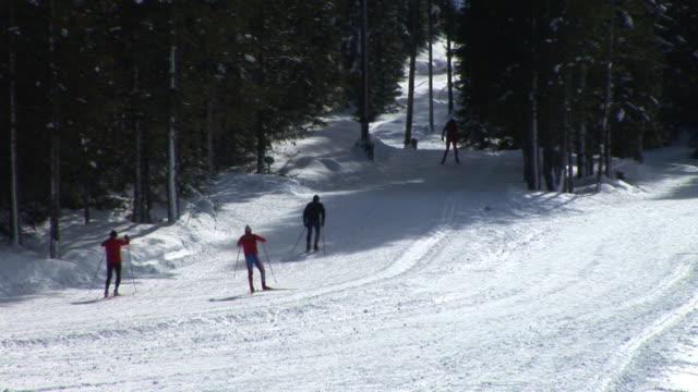 HD: Winter Sports