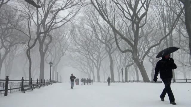Winter storm Jonas on January 23 2016 / Footage of Central Park Mall during snow storm / Manhattan New York City USA