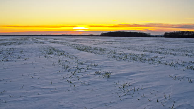 WS DS Wintry Landscape At Sunrise